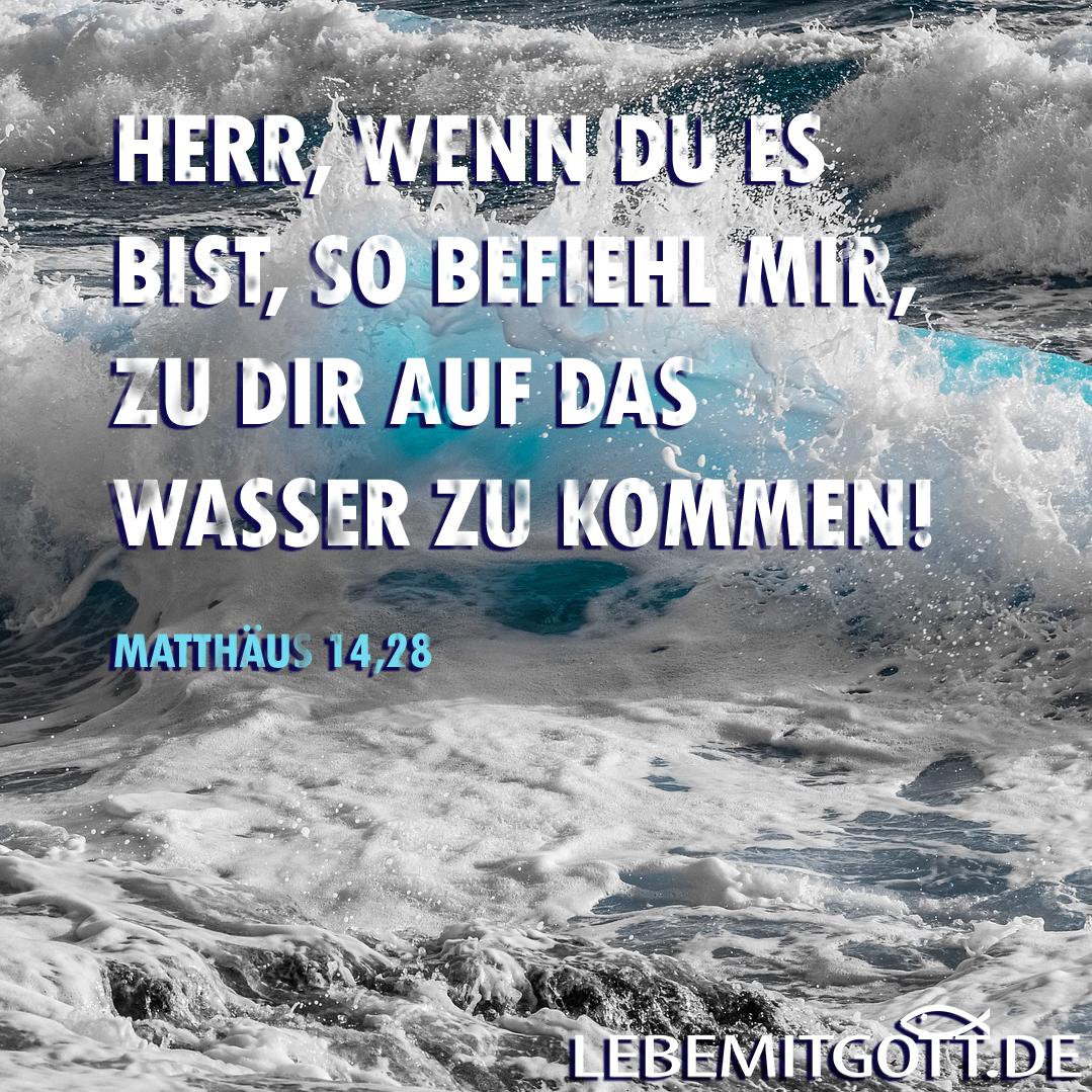 Matthäus 14,28