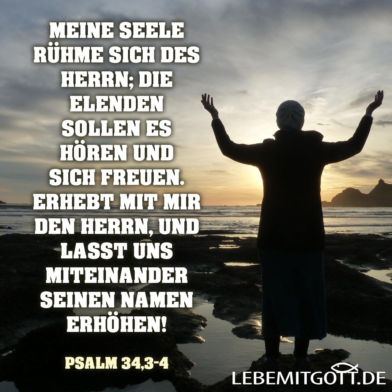 Meine Seele rühme des Herrn!