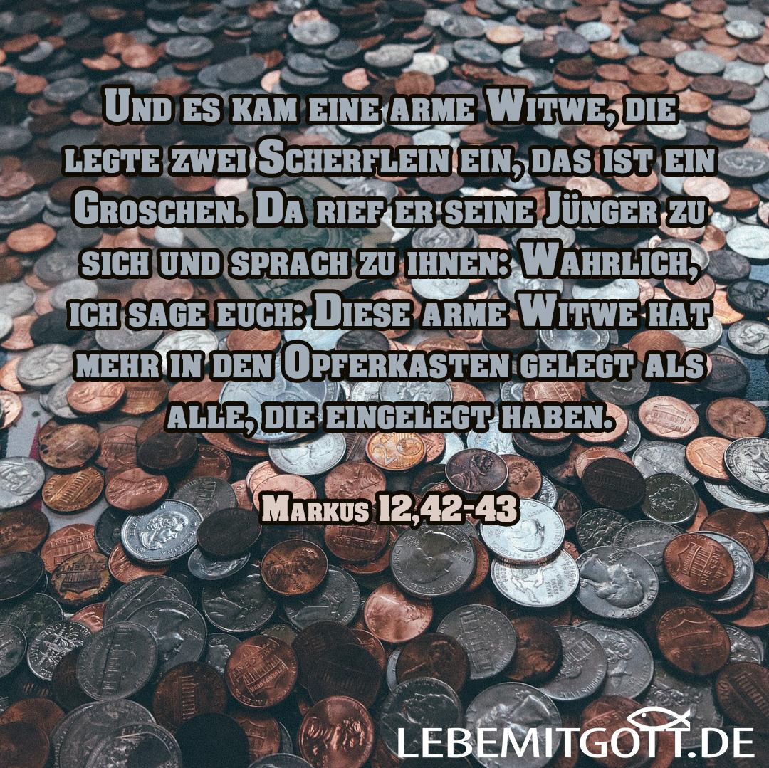 Scherflein