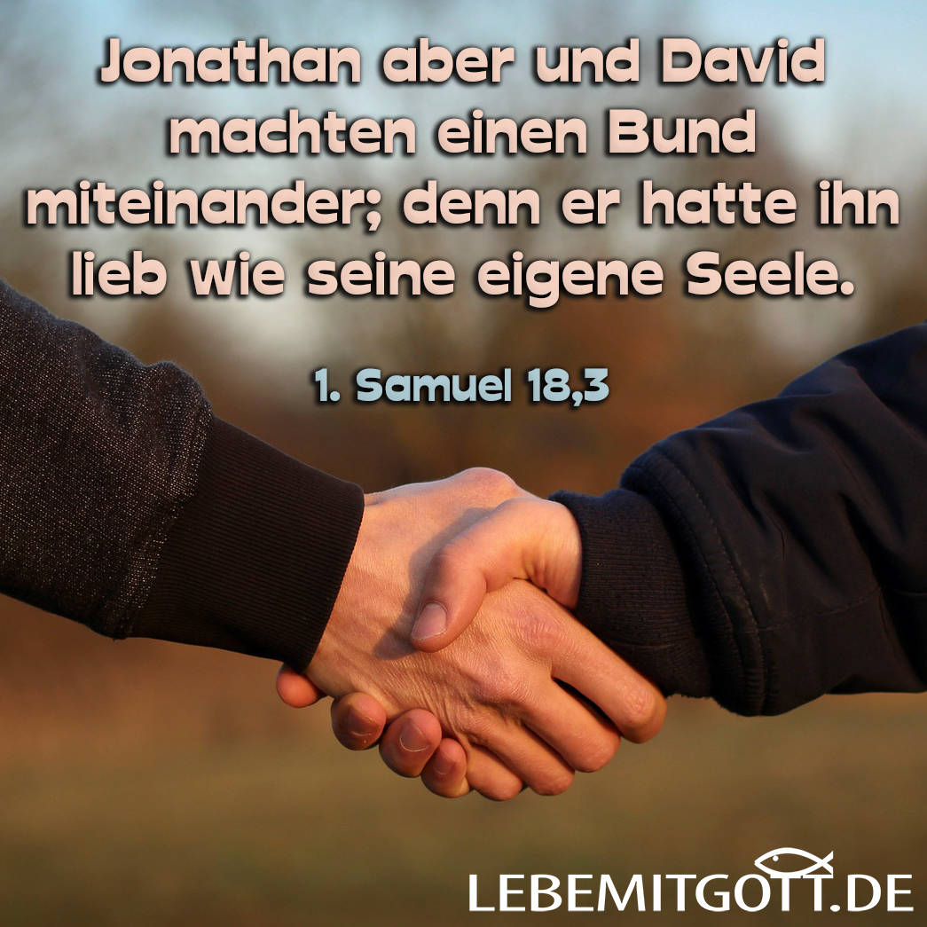 Jonathan und David