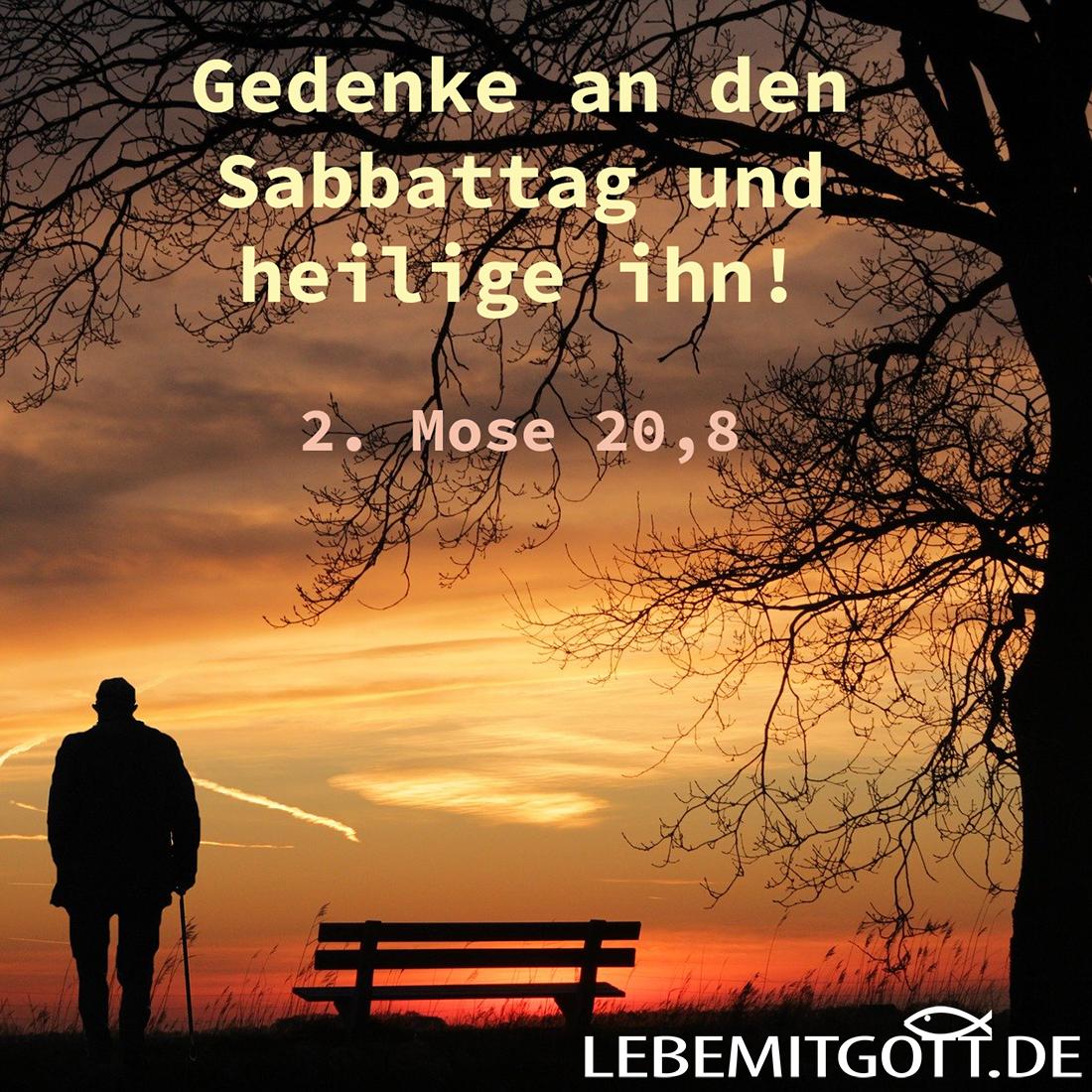 Sabbattag