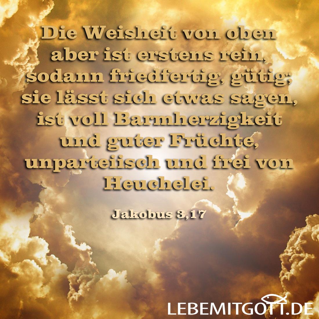 Weisheit von oben
