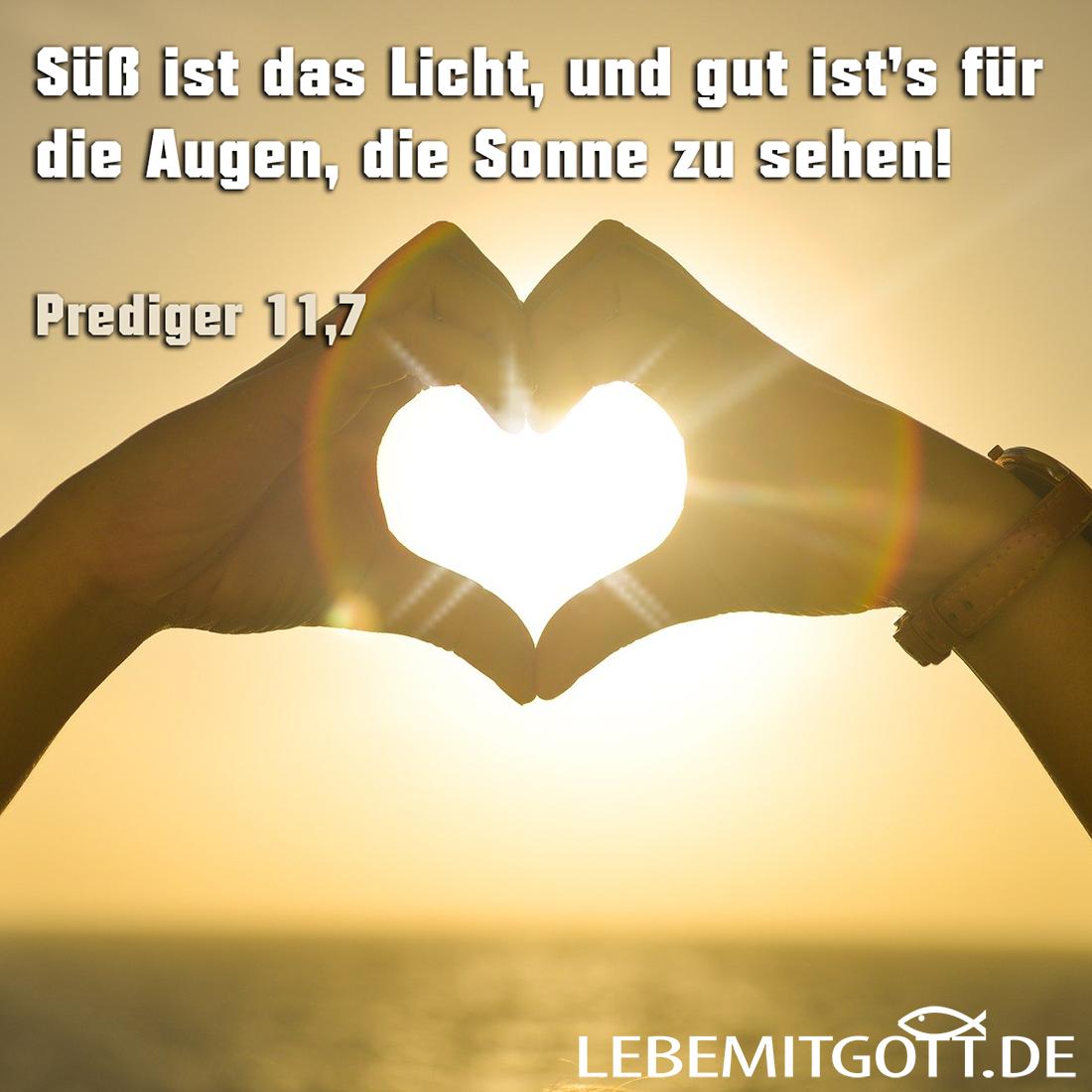Süß ist das Licht