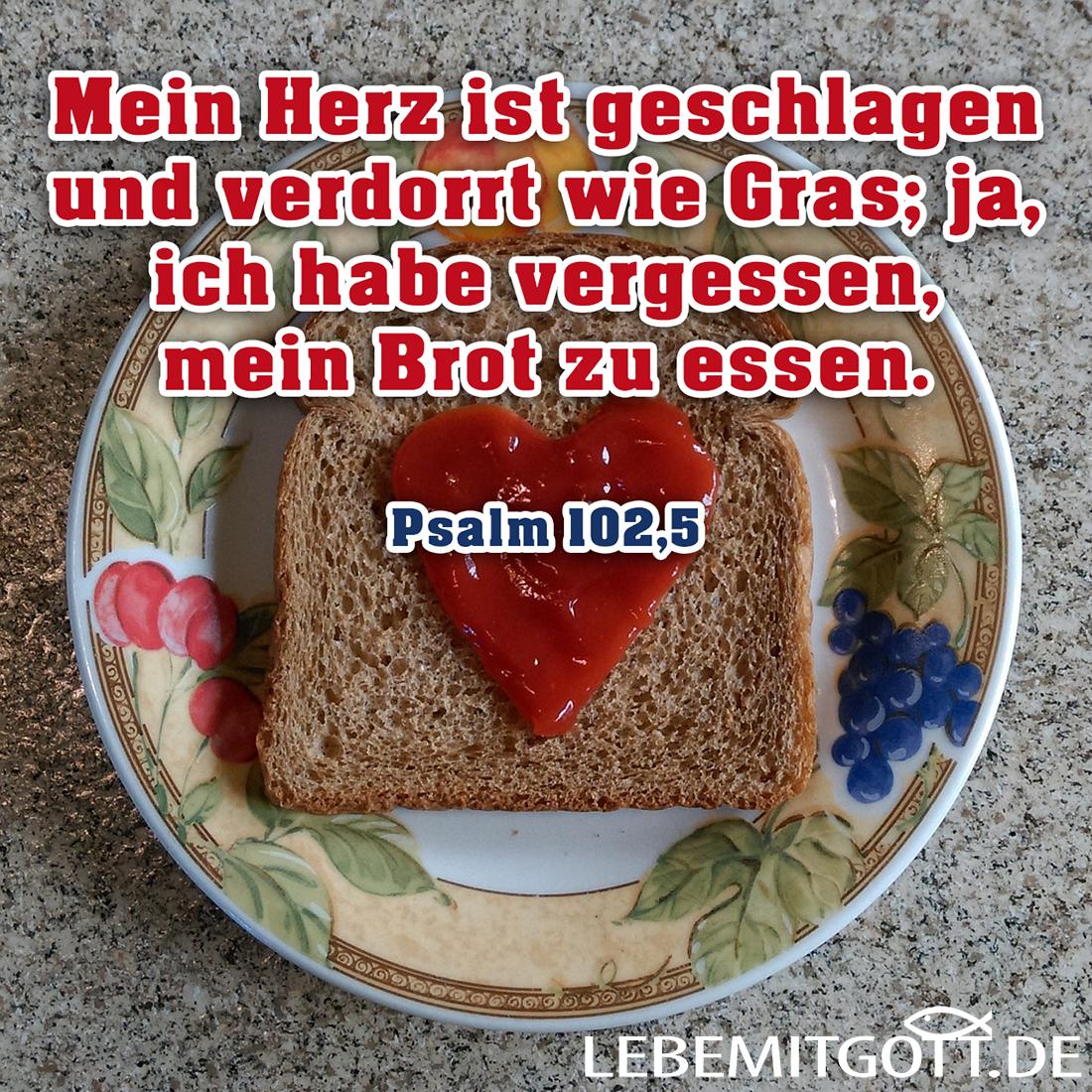 Brot zu essen