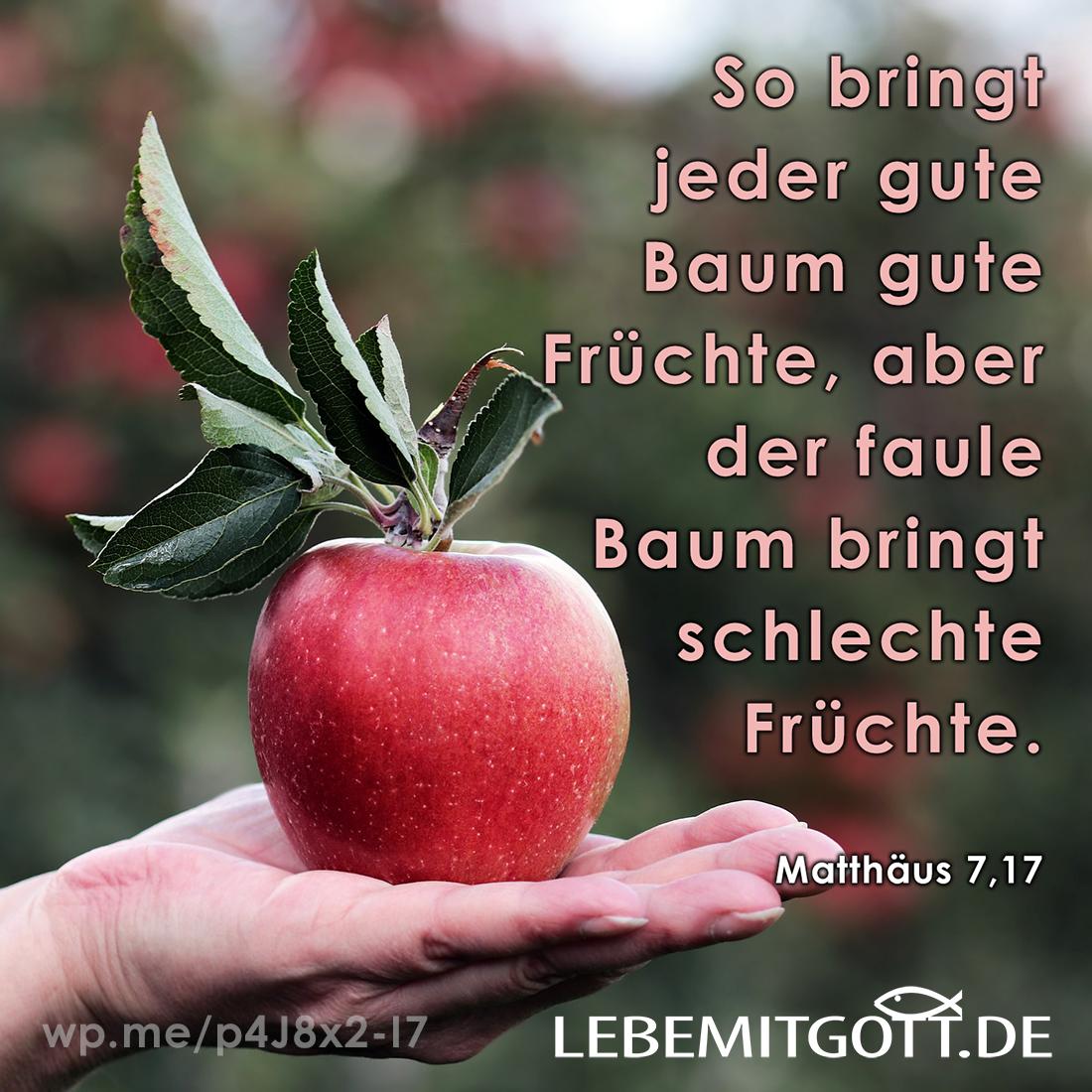 gute Früchte