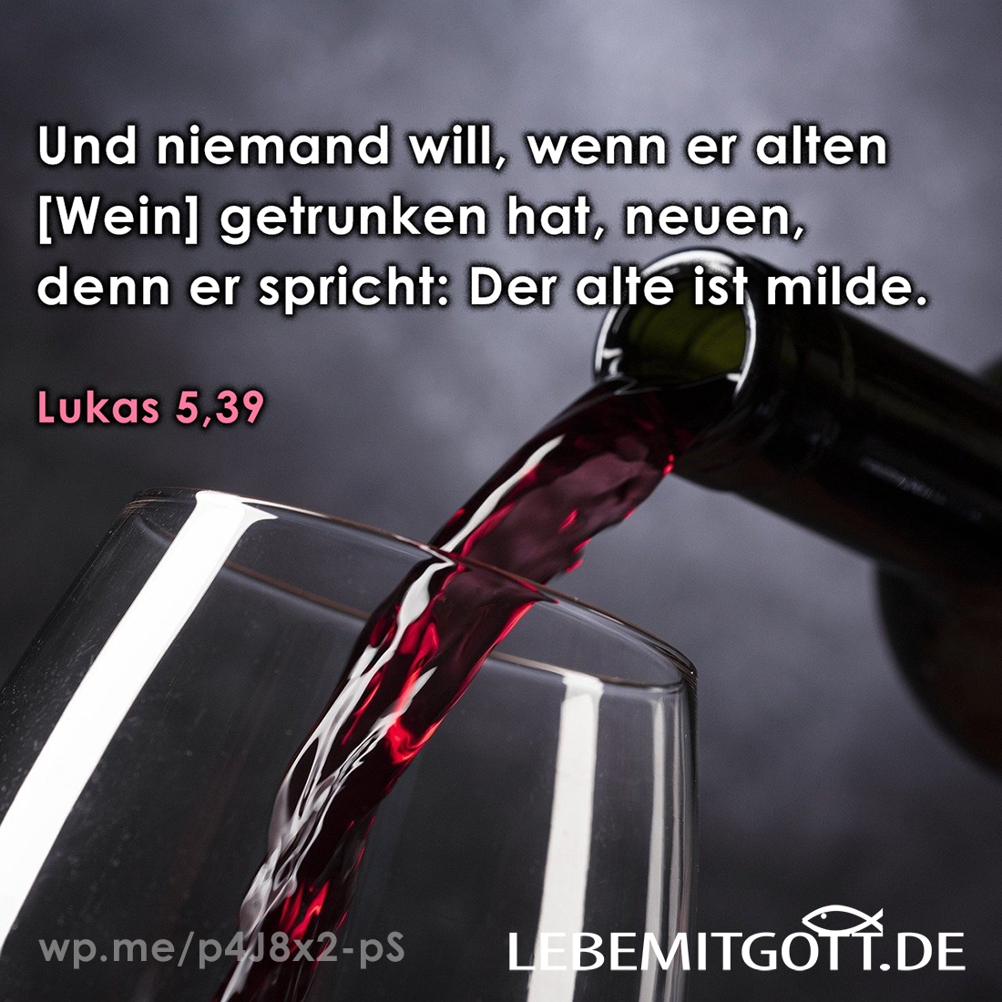 neuen Wein